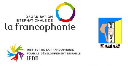 Projet 3 - Formation Transition Energétique_logos OIF, IFDD et EAMAU