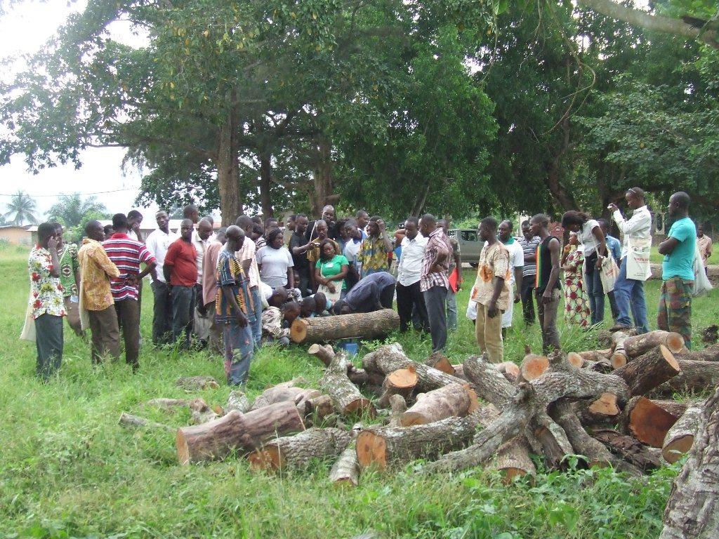 Protéger nos ressources en bois